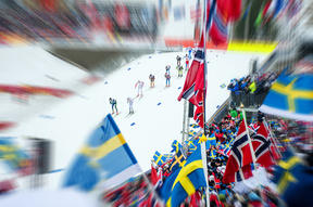 skiers during European race